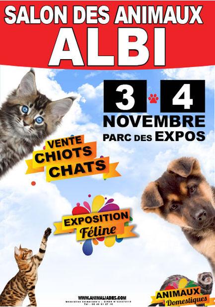 Photo ads/1410000/1410320/a1410320.jpg : salon des animaux Albi