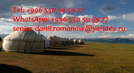 Photo ads/1462000/1462832/a1462832.jpg : guide, driver in Kyrgyzstan, travel, hiking, excur